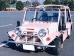 medium_Mini_Moke_1.jpg